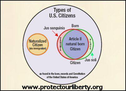 NBC Venn Diagram
